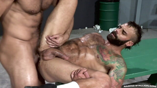 Hot Guys 19 bear gay big cock videos